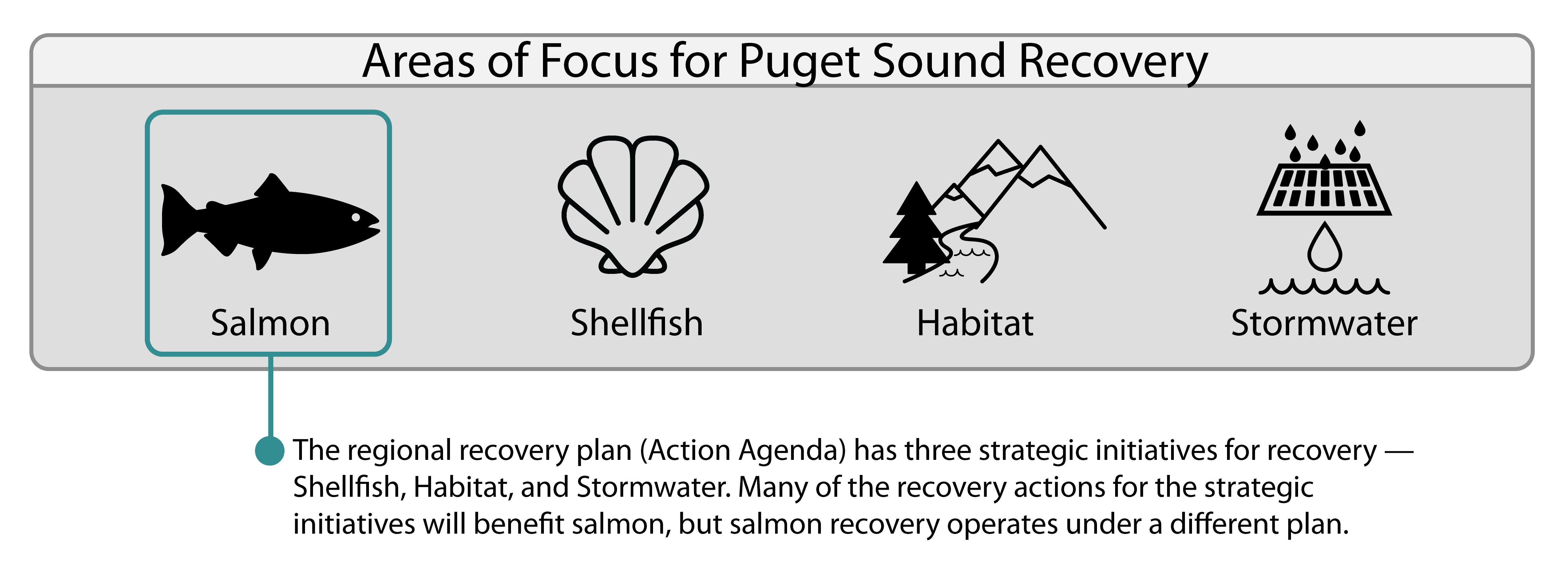 puget sound creel report