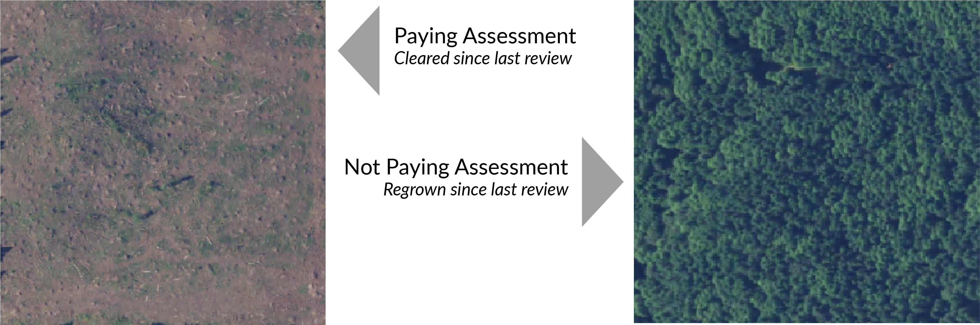 Image of land paying in Clark County and another not paying.png